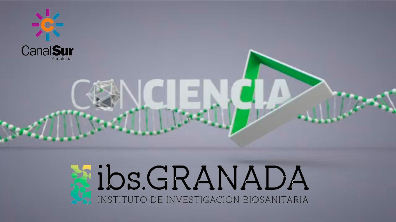 El Instituto de Investigación Biosanitaria de Granada es premiado por Canal Sur TV