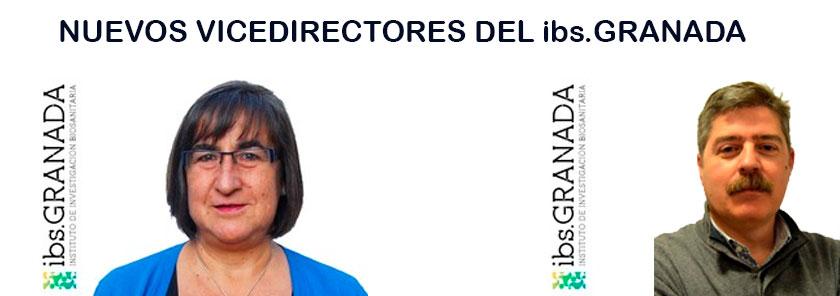 Nombramiento de 2 Vicedirectores del ibs.GRANADA