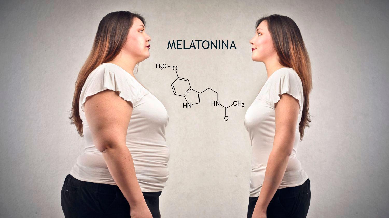 Investigadores del ibs.GRANADA han descubierto un nuevo mecanismo de la melatonina para combatir la obesidad