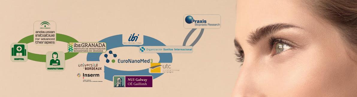 Un grupo de investigación del ibs.GRANADA lidera un proyecto europeo para el desarrollo de un nuevo modelo nanotecnológico de piel artificial humana