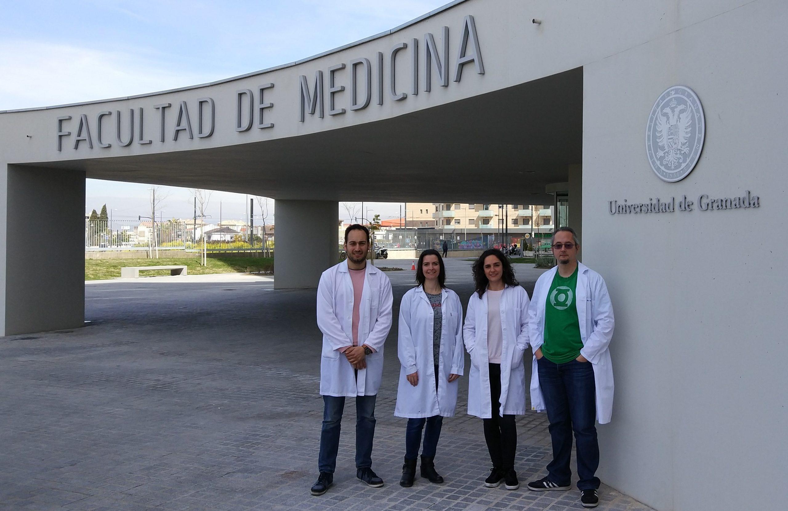 Investigadores del Ibs.Granada identifican un mecanismo para incrementar la eficacia analgésica de los opioides