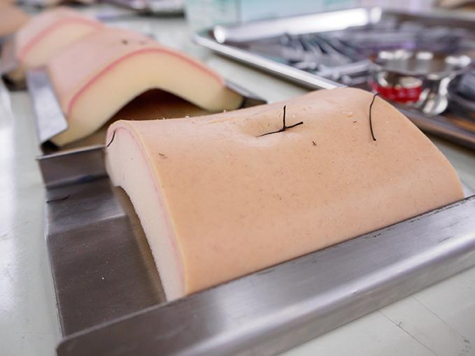 El ibs.GRANADA pionero en la generación de piel artificial