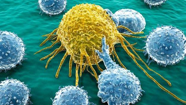 Celulas cancer aislamiento