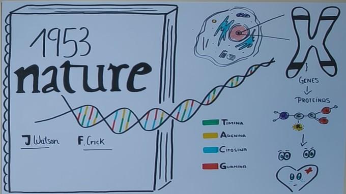 Científicos del ibs.GRANADA y GENYO explican qué es el ADN a un millar de estudiantes en el Día Mundial del ADN