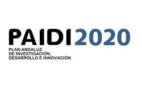 Convocatoria de contratos de personal investigador doctor. PAIDI2020