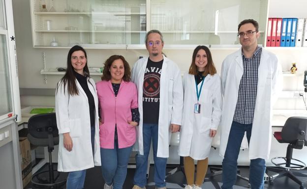 Científicos del ibs.GRANADA descubren el papel clave de una proteina en la interacción entre sistema nervioso y neuronas durante el dolor neuropático