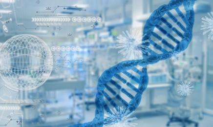 El Gobierno aprueba la convocatoria para lanzar la nueva infraestructura de Medicina de Precisión, IMPaCT